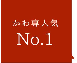 かわ専人気No1!